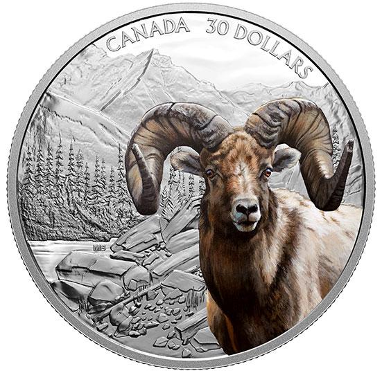2 oz. Pure Silver Coin - Imposing Icons Series: Bighorn Sheep