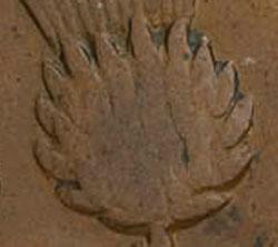 Nova Scotia - Province - 1/2 penny 1843 - 14 bracts