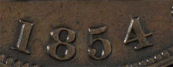 1/2 penny 1854 - 1/2 penny 1854 - Plain 4