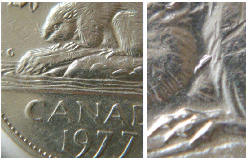 Coins and Canada - 5 cents 1977 - Canadian coins price guide and values