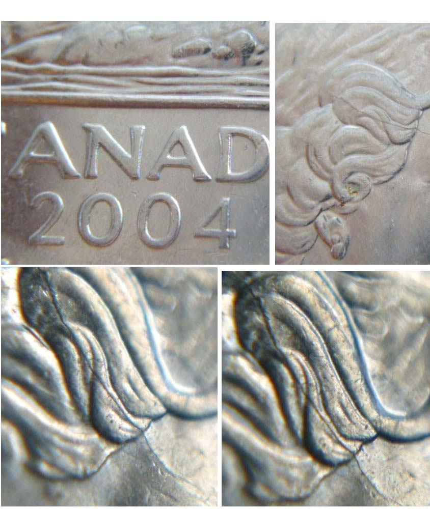 Coins and Canada - 5 cents 2004 - Canadian coins price guide and values